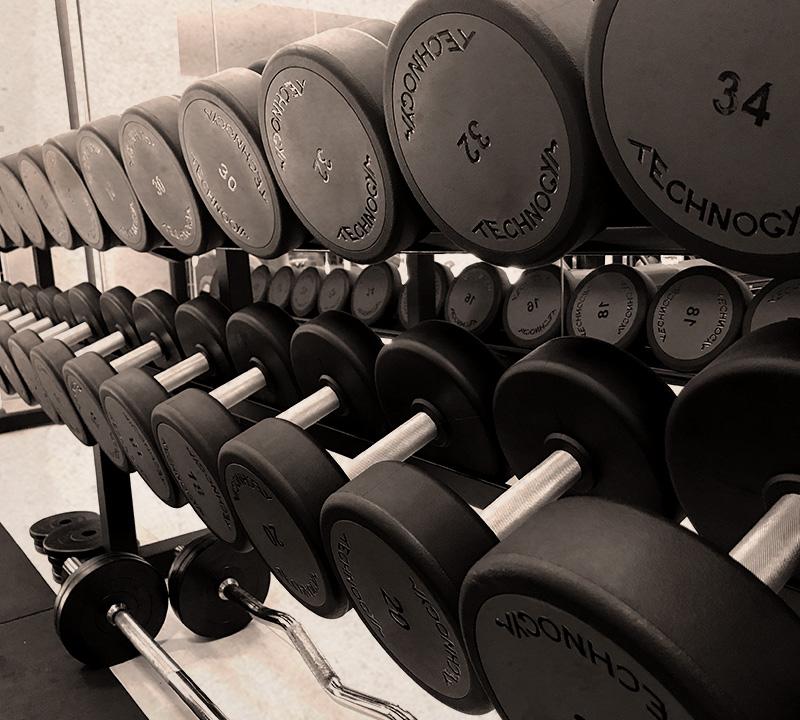 attrezzature technogym leader mondiale settore fitness per palestra professionale multifunzione a perugia